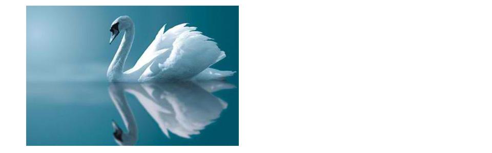 ayurveda-yoga-practice-13